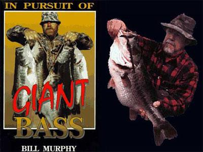 bill-murphy