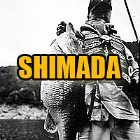 kazuya-shimada