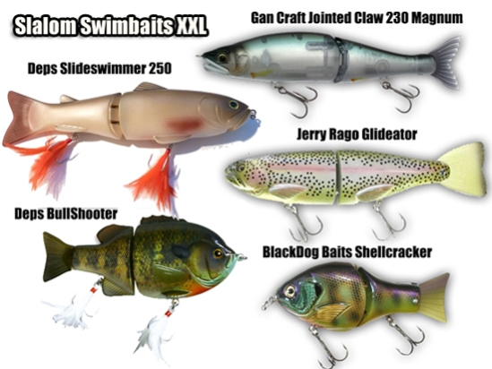 gan craft jointed claw 230 magnum, deps slideswimmer 250, rago glideator, blackdog baits shellkcracker, deps bullshooter